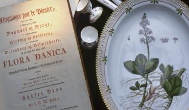 Flora Danica - videnskaben florerer på sart porcelæn